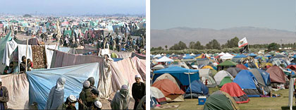 Refugee camp / Coachella music festival